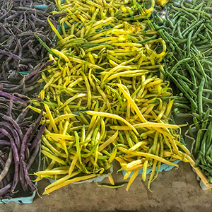 String Beans Purple Yellow Green