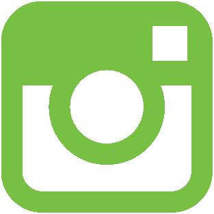 Instagram Icon Green