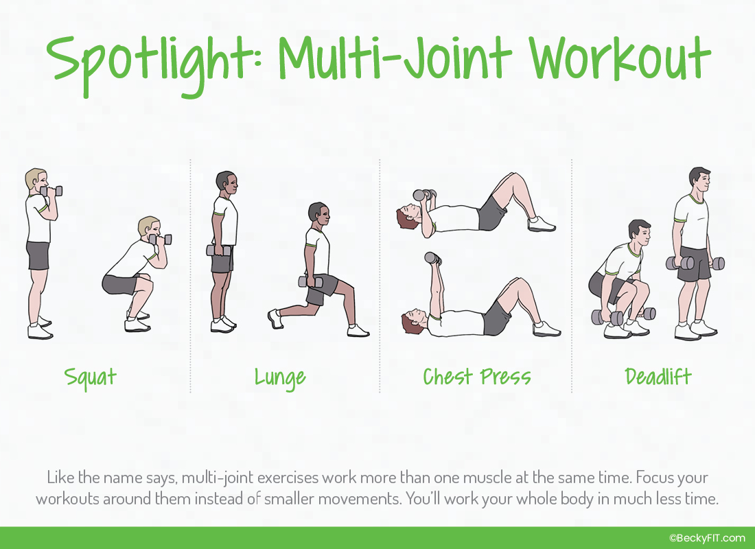 Multi-Joint Exercises Spotlight